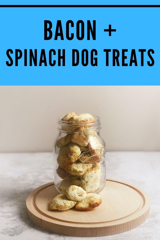 homemade bacon and spinach dog treats